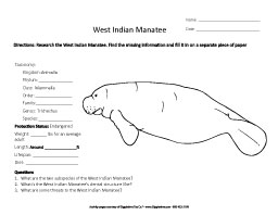 Research the Manatee